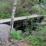 Brücke im Wald am Preikestolen