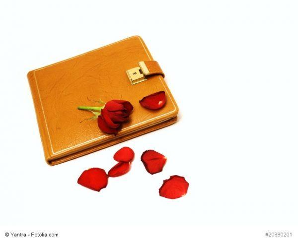 Ein gelbes Freundschafts- oder Tagebuch mit einer Rose und ein paar roten Rosenblättern