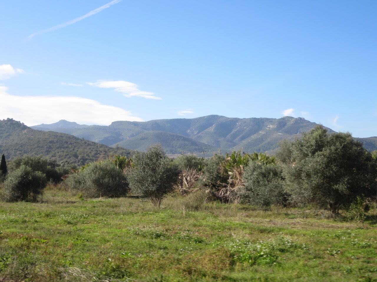 Eine grüne Landschaft im Hintergrund Berge