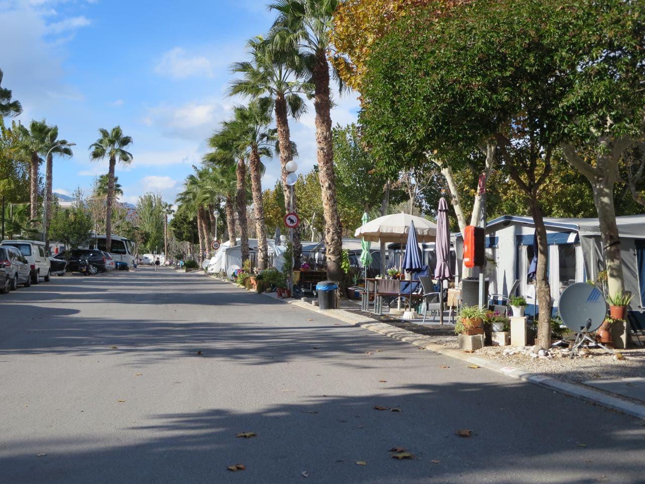 Eine Straße mit Palmen und Dauercampern