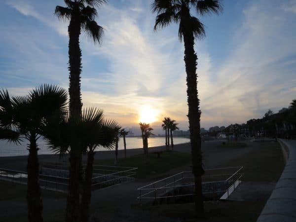 Die Sonne geht unter an einem Strand mit zwei großen und mehreren kleineren Palmen