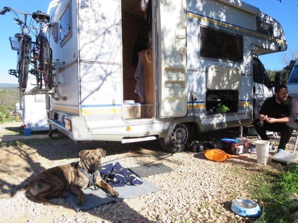 Ein Hund liegt vor einem Wohnmobil vor dem ein Mann sitzt