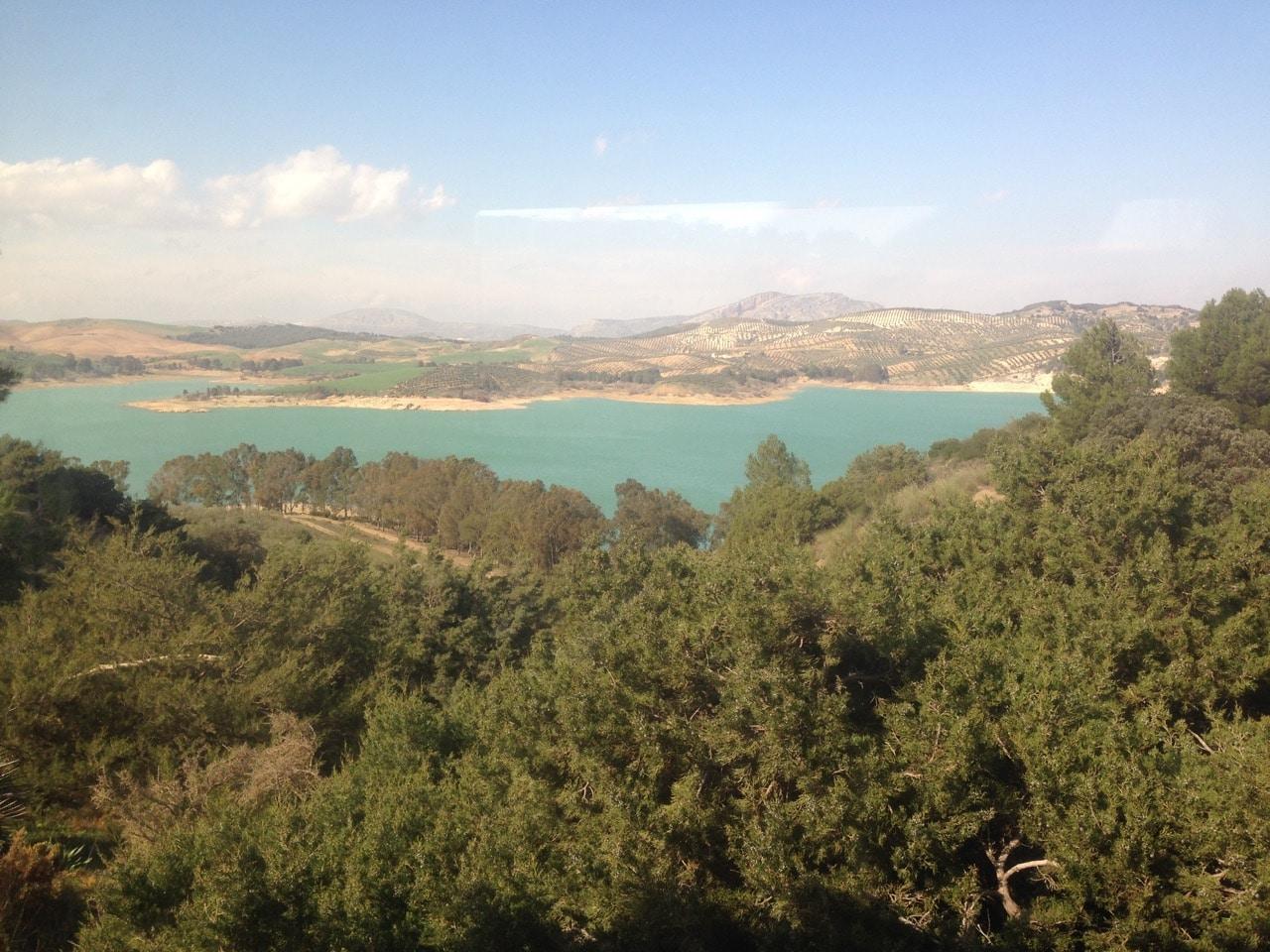 Blick über Wälder auf einen See