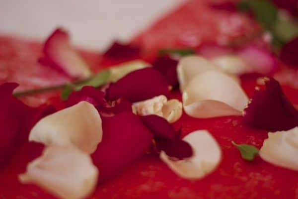 Weiße und rote Rosenblätter