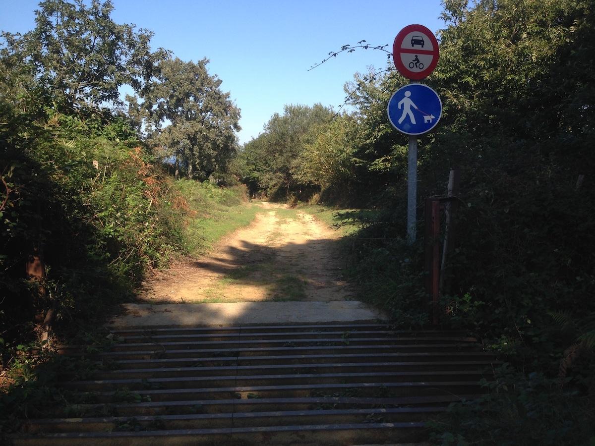 Ein Weg mit links und recht etwas Wiese und Hecken, davor ein blaues Schild mit einem Hund an der Leine und darüber eines mit einem Verbot für jegliche Fahrzeuge
