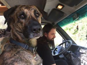 Unser Hund Chief sitzt auf dem Beifahrersitz neben Sebastian am Steuer