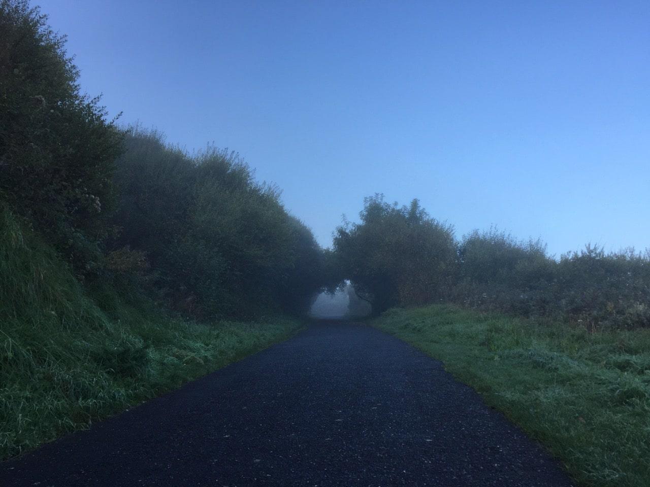 Ein Weg liegt im Nebel