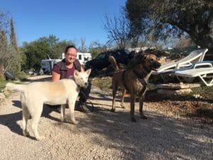 Links eine Husky-Hündin, rechts ein Portugiesischer Herdenschutzhund dazwischen hockt eine Frau und dahinter stehen Wohnmobile