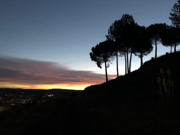 Blick auf einen Berg mit Bäumen und einen Sonnenaufgang